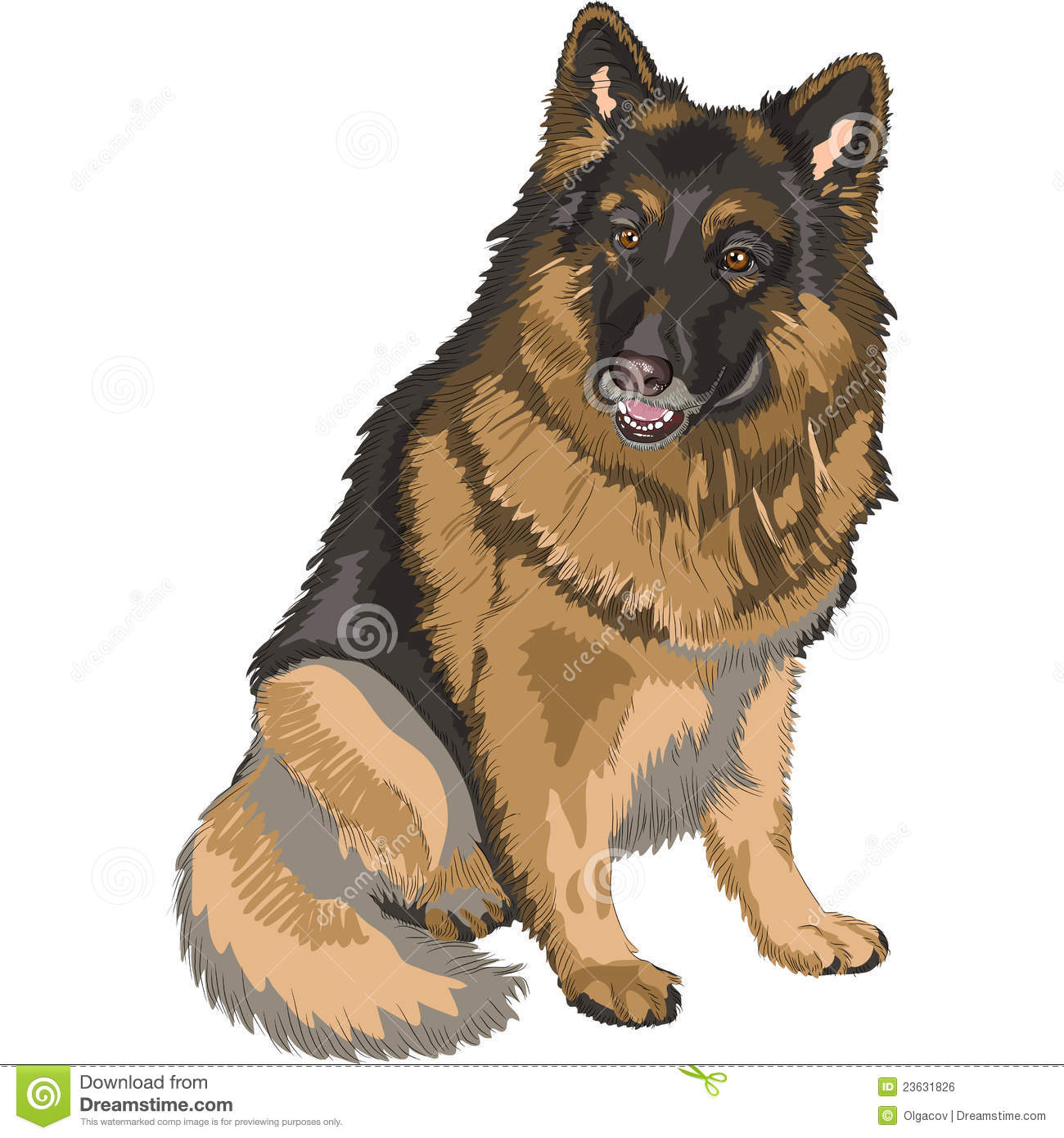 German shepherd drawing in color vector color sketch dog german