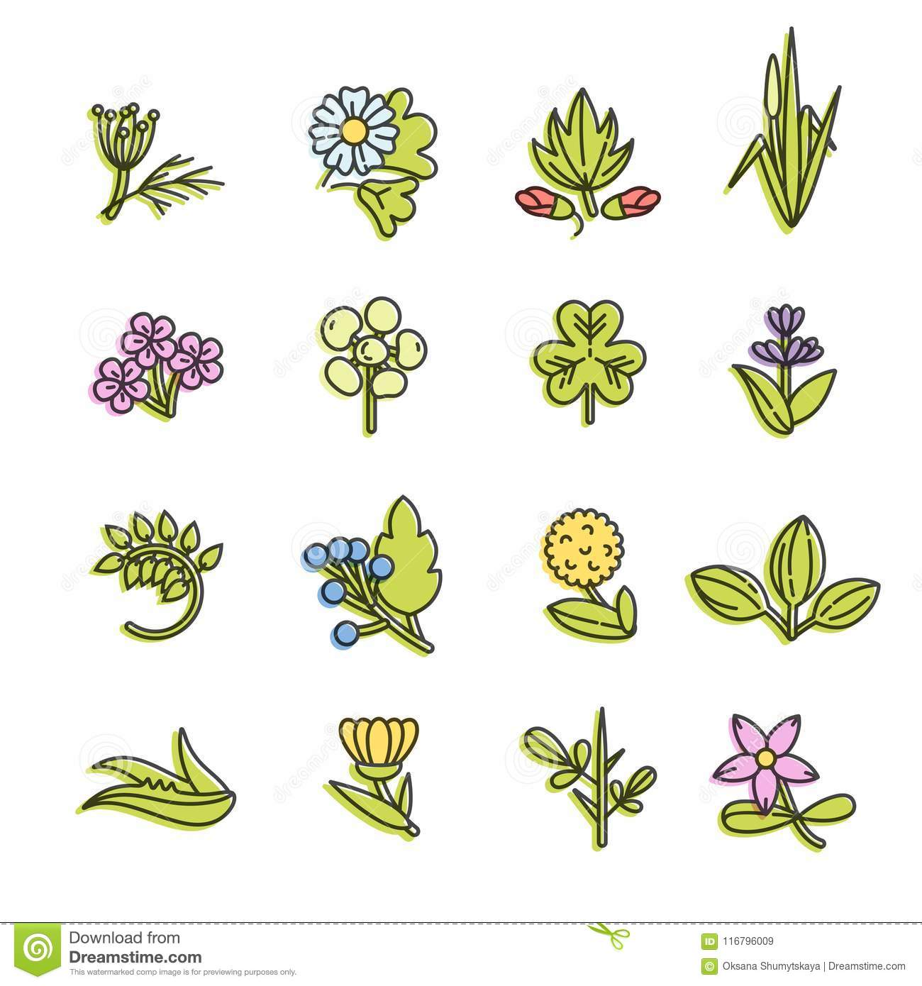 Floral And Botanical Logos Collection: Vector Colorful Set Design Templates And Emblems