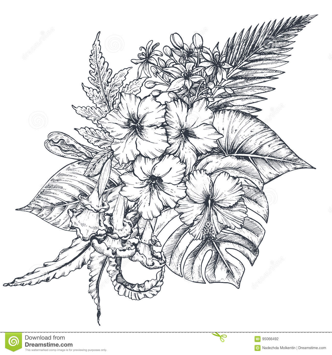 Tropical Flower Line Drawing : Vector composition of hand drawn tropical flowers palm