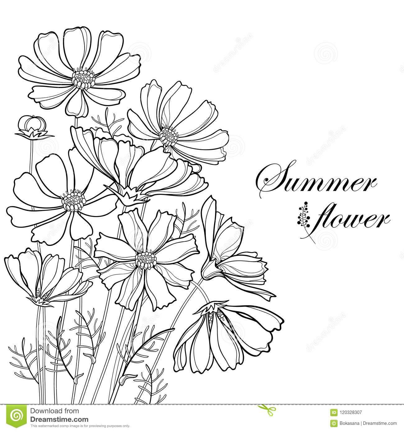 Outline Bunch Of Flowers Clipart