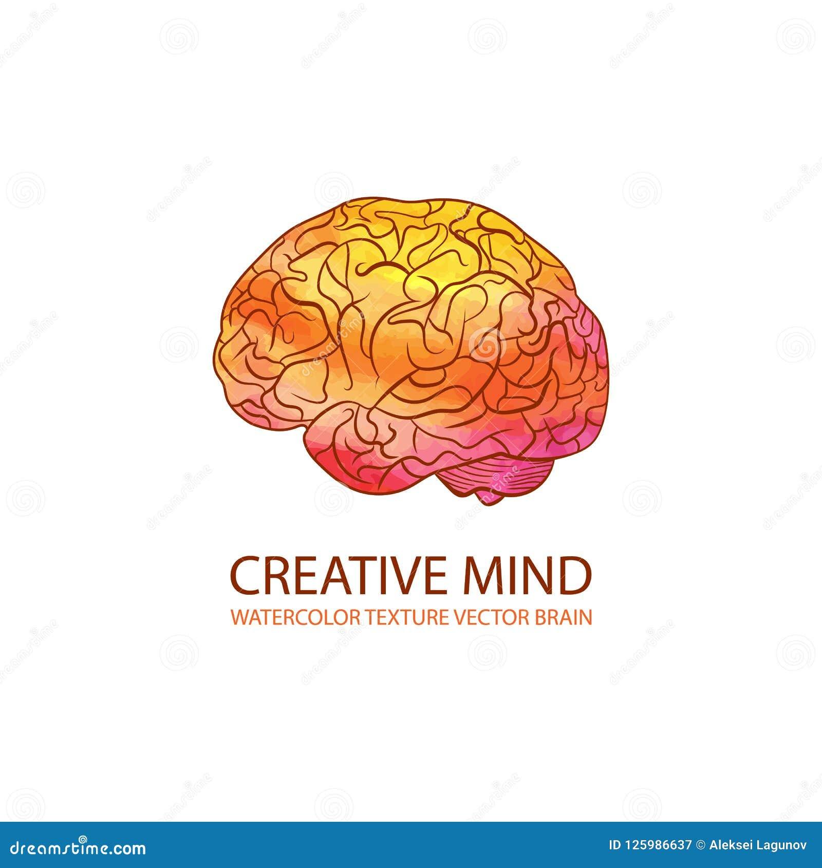 Vector Creative Mind Illustration, Watercolor Gradient Colorful Brain, Logo Template.
