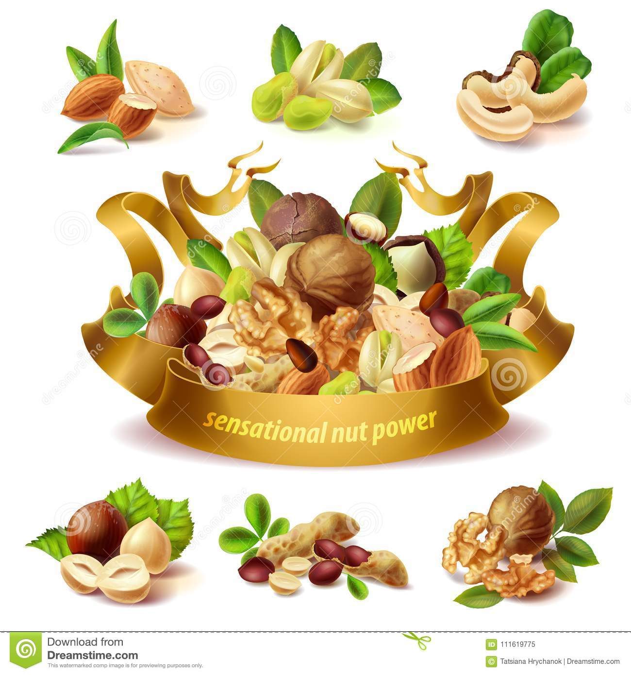 Vector 3d realistic set of different nuts