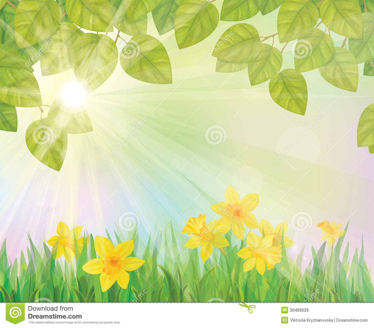 Spring Flower With Green Background Vector 02 Free Download: Vector Of Daffodil Flowers On Spring Background. Royalty