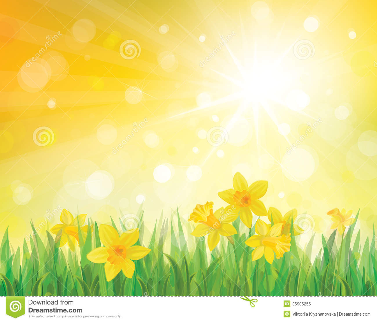 Vector Of Daffodil Flowers On Spring Background  Stock Vector