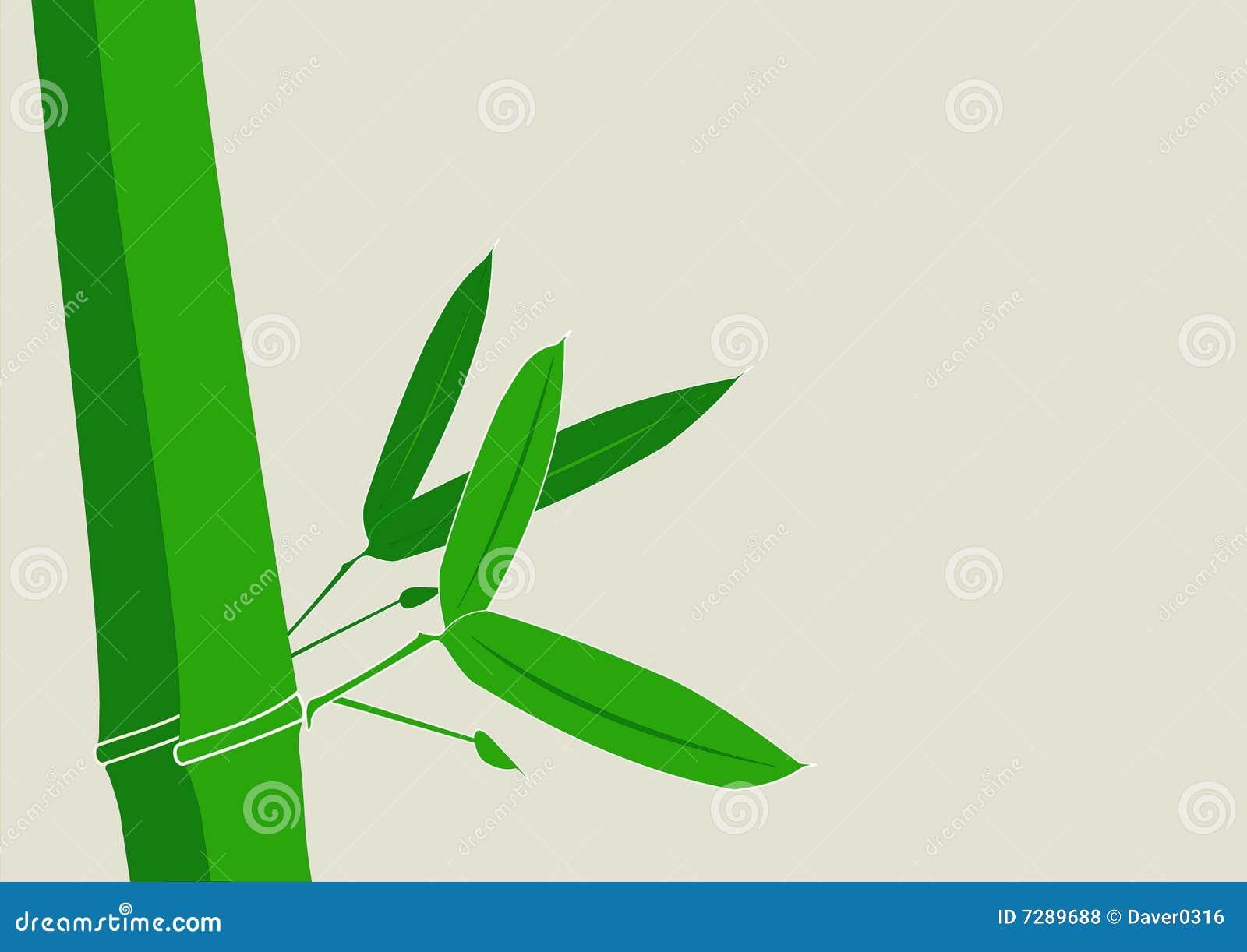 Vector de bambú del fondo