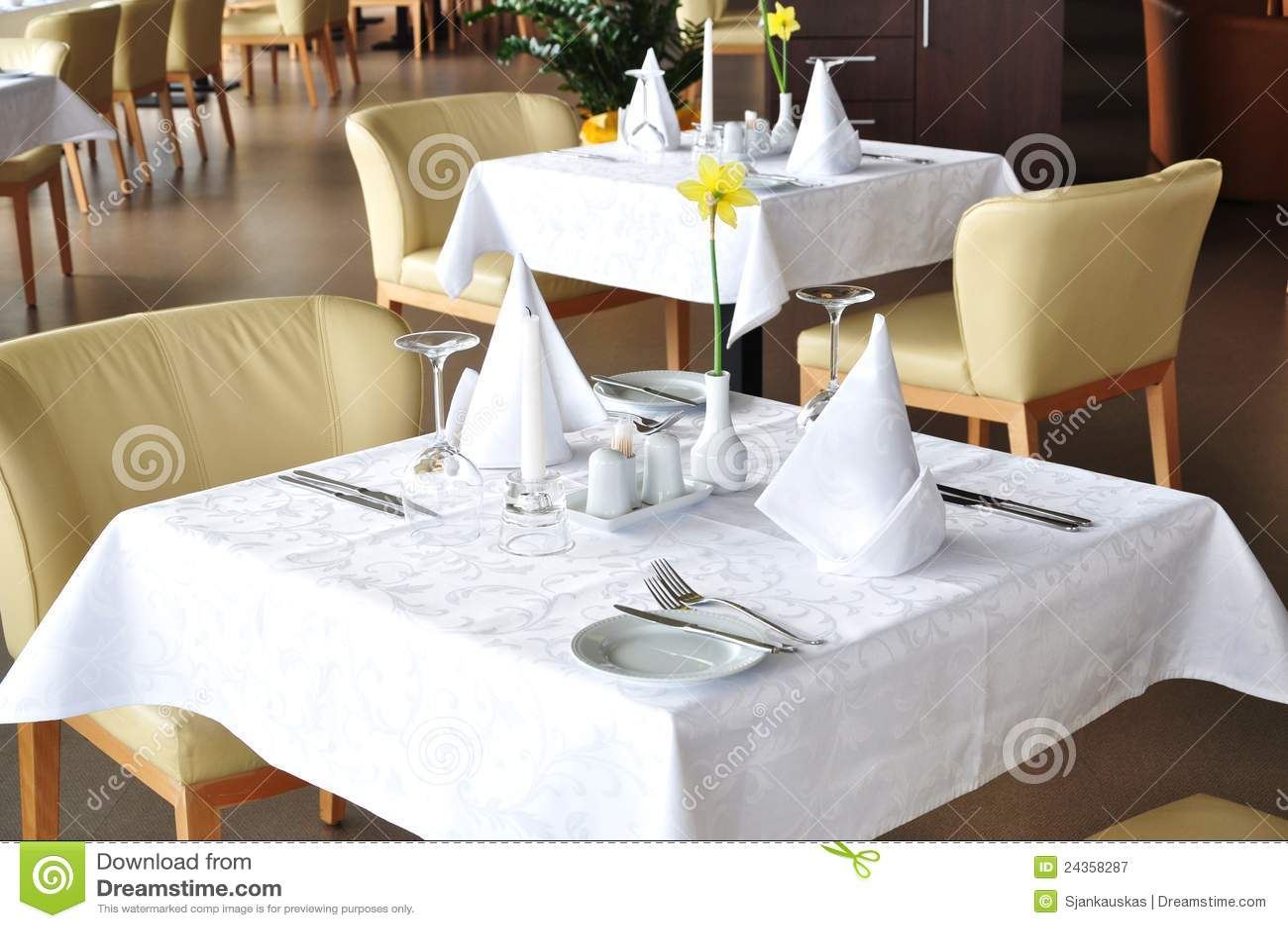 Vector de cena