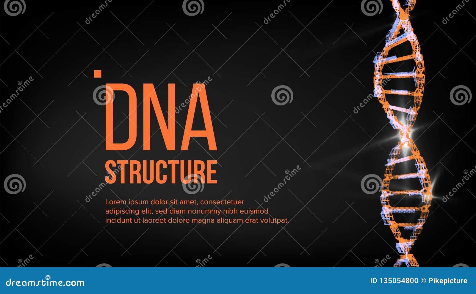 Vector de la estructura de la DNA Célula de Digitaces Símbolo de la evolución Ilustración