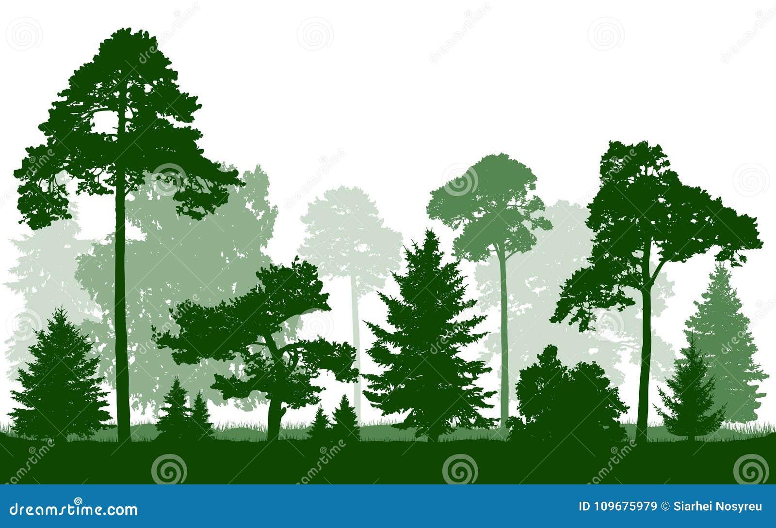 Vector de la silueta del Forest Green, aislado en el fondo blanco