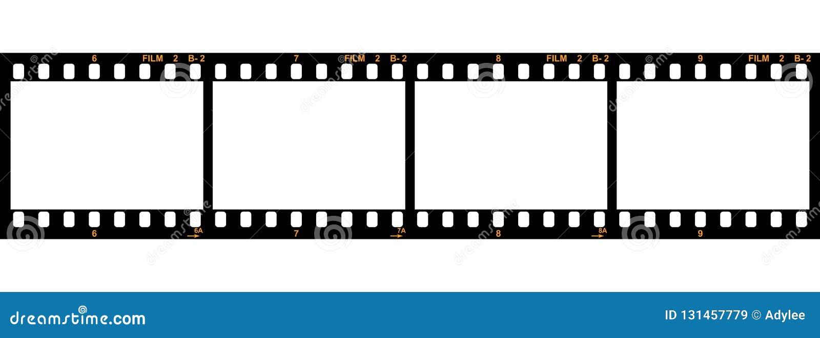 Vector de la tira de 35 películas
