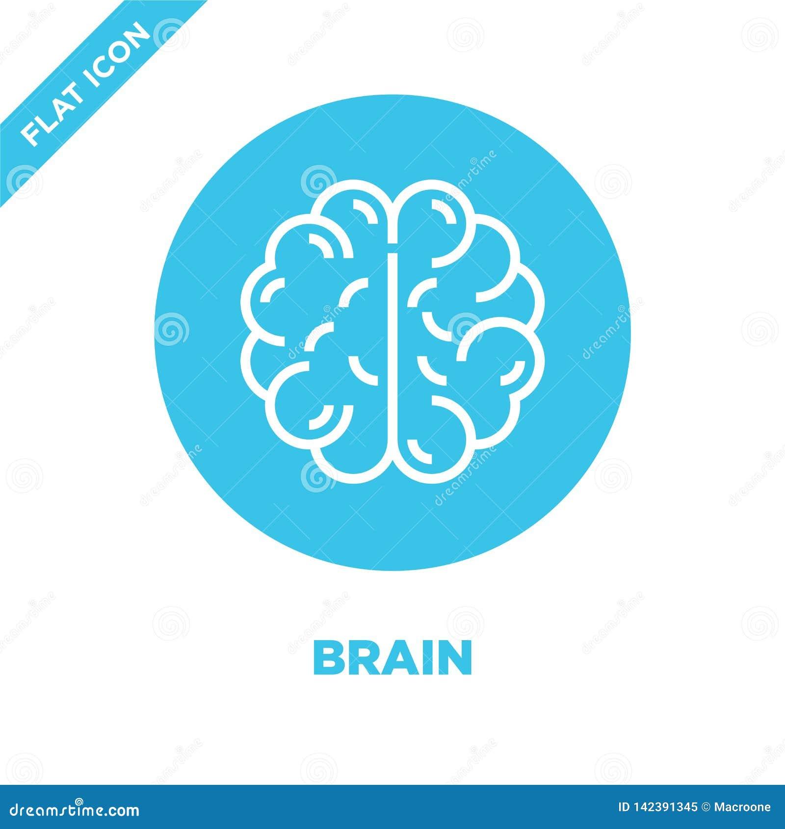 Vector del icono del cerebro de la colección de los órganos humanos Línea fina ejemplo del vector del icono del esquema del cereb