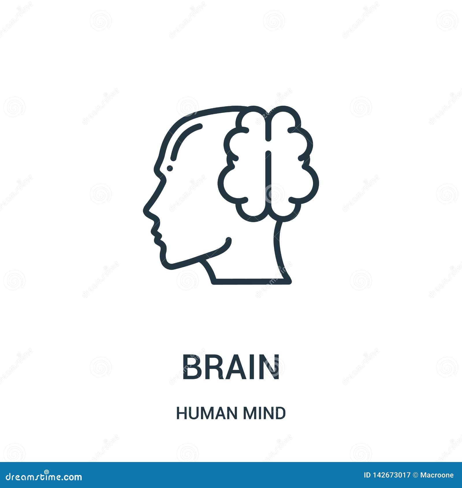Vector del icono del cerebro de la colección de la mente humana Línea fina ejemplo del vector del icono del esquema del cerebro S
