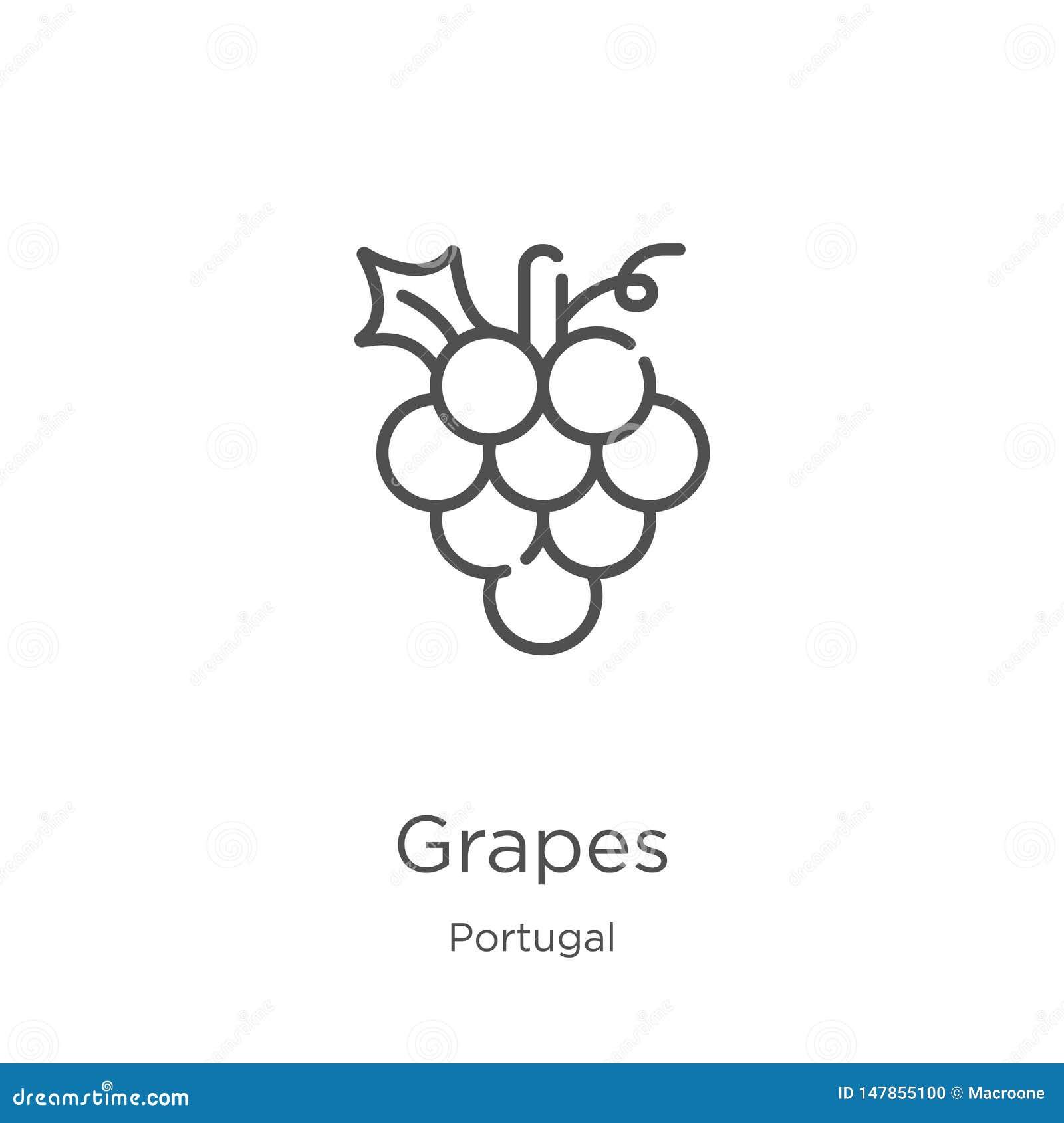 Vector del icono de las uvas de la colección de Portugal L?nea fina ejemplo del vector del icono del esquema de las uvas Esquema,