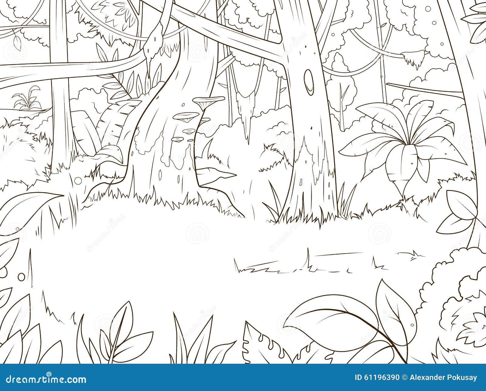 Vector Del Libro De Colorear De La Historieta Del Bosque De La Selva