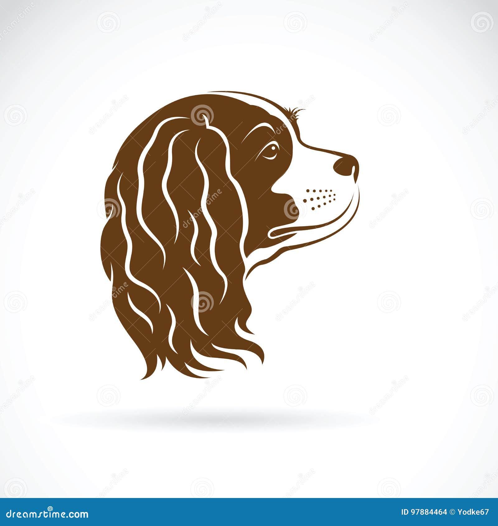 Vector del perro arrogante de rey Charles Spaniel en el fondo blanco