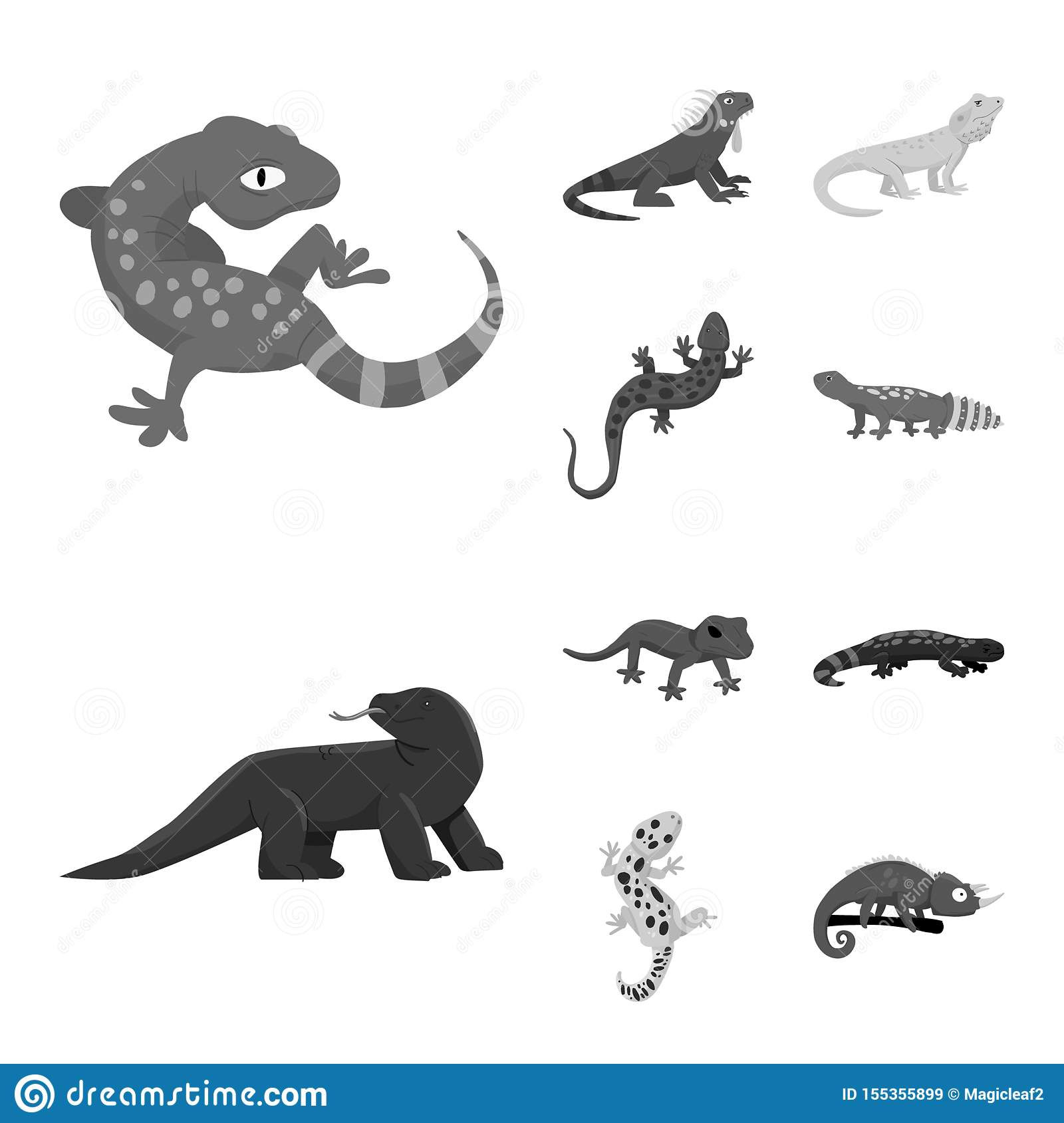 Isolated object of wild and exotic sign. Collection of wild and fauna stock symbol for web.