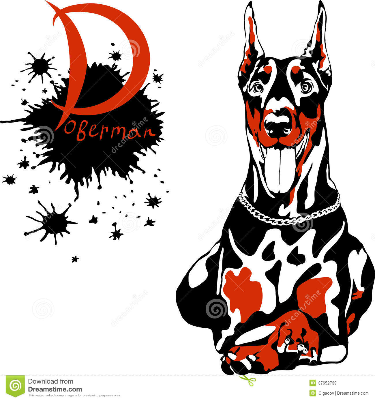 Vector Dog Doberman Pinscher Breed Royalty Free Stock Images - Image ...