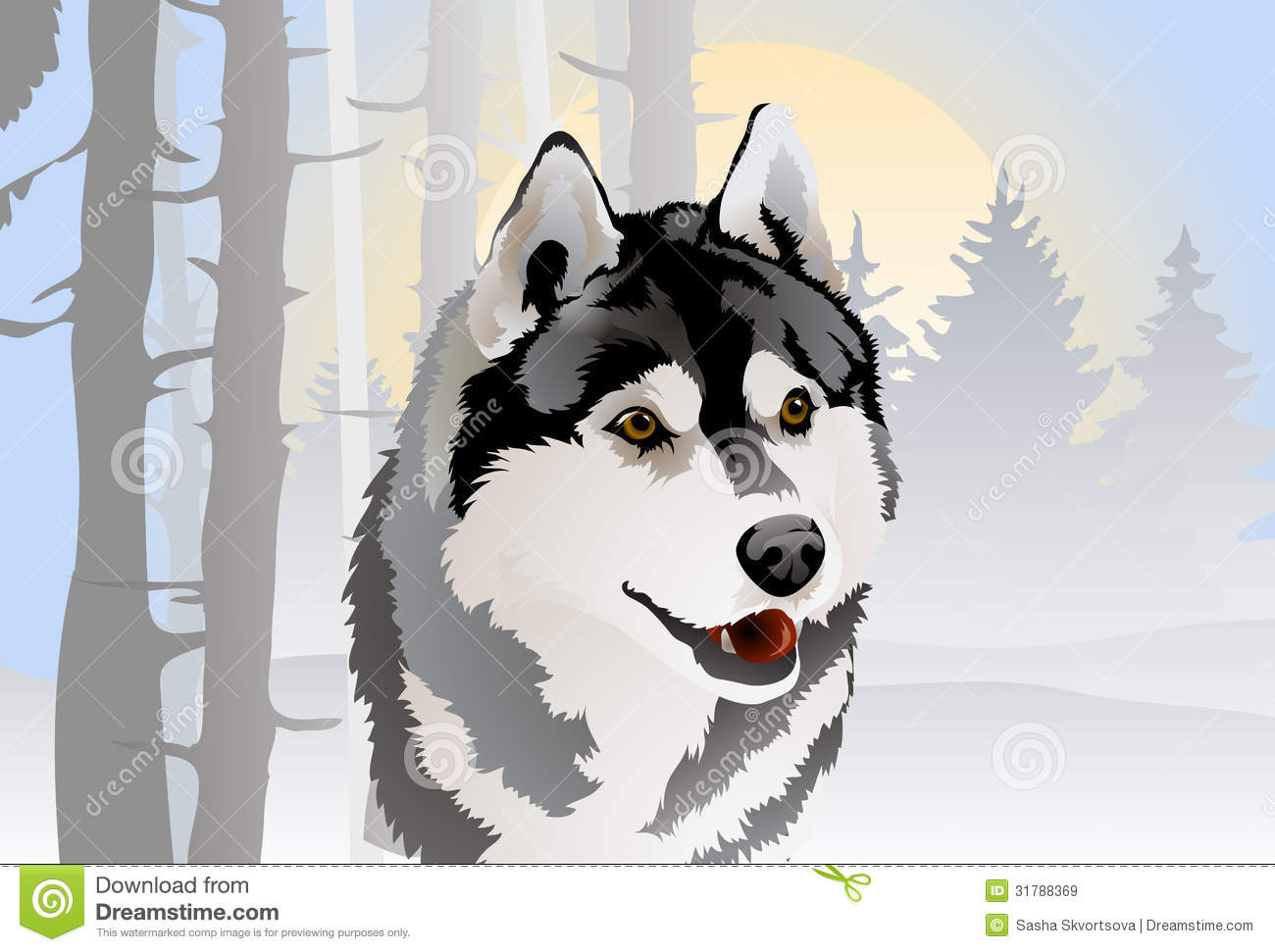 Vector Drawing Of The Dog Breed Siberian Husky In Royalty Free Stock ... Angry Black Wolf Drawing