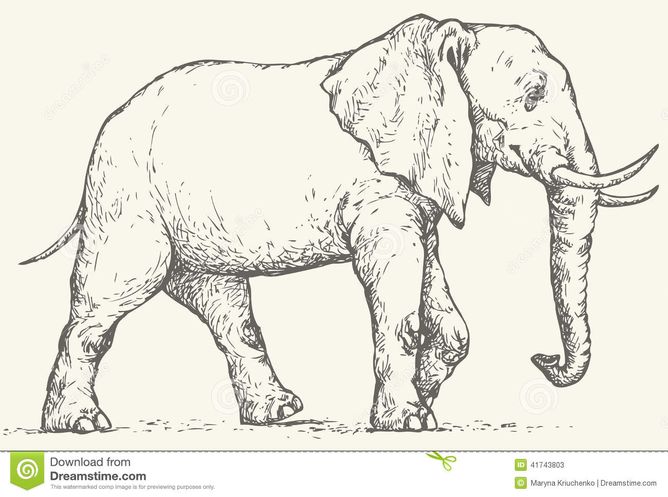 vector drawing elephant stock vector image 41743803
