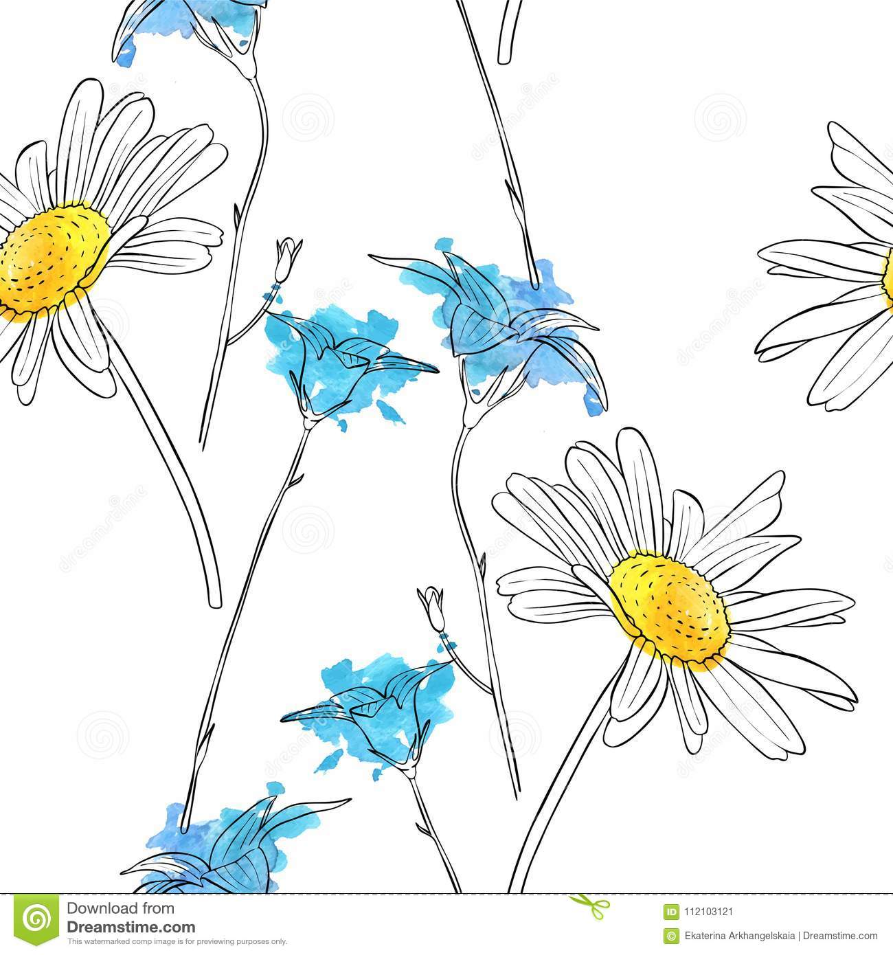 Vector Drawing Flower Of Daisy Stock Vector Illustration Of