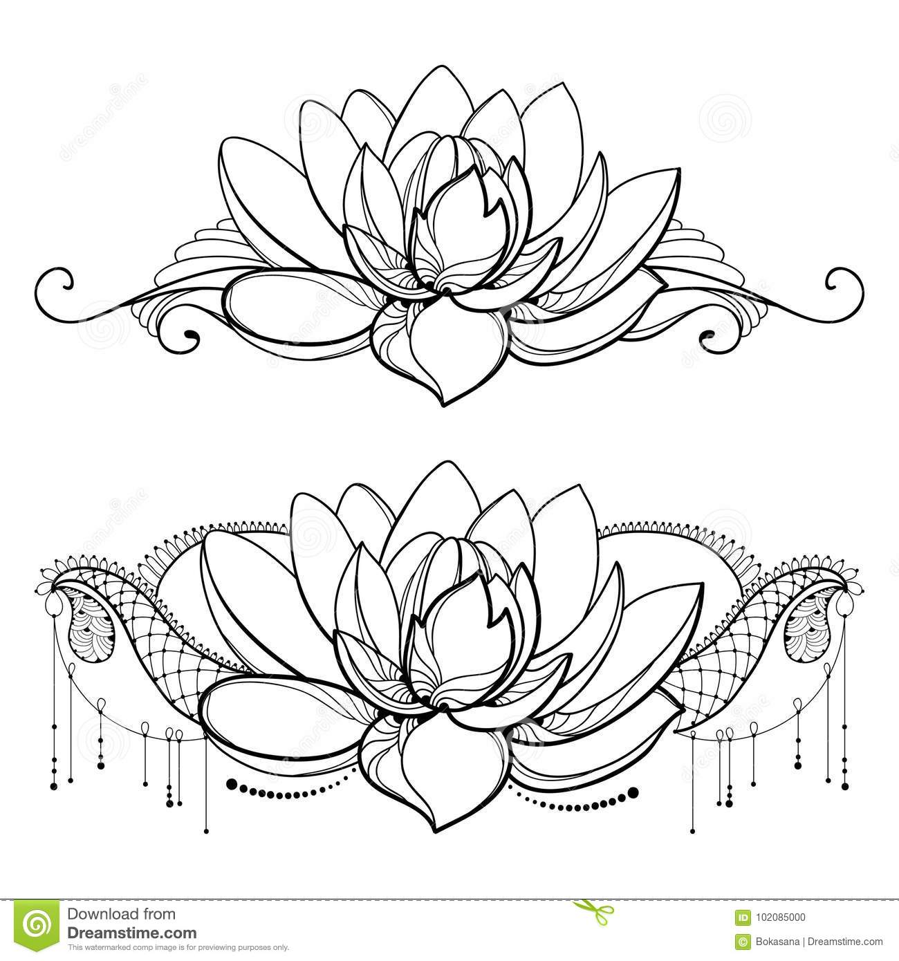 Vector Drawing With Outline Lotus Flower Decorative Lace And Swirls
