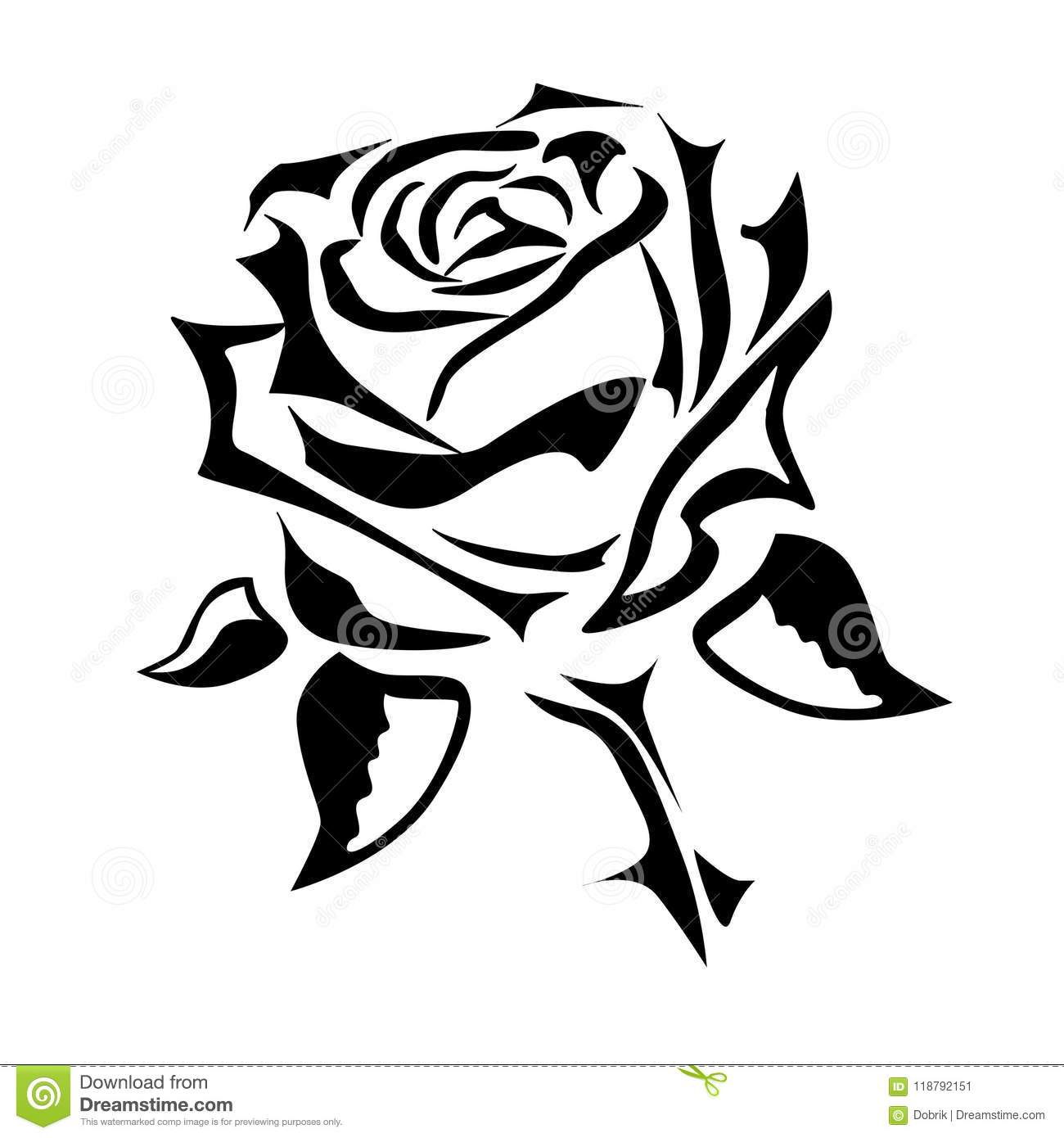 Vector Drawing Of A Rose Tattoo Logo Stock Vector Illustration