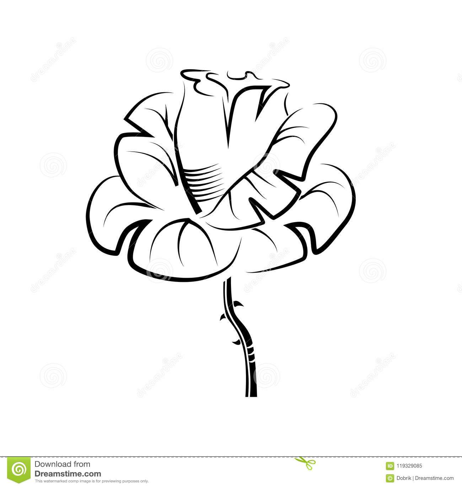 Vector Drawing Of A Rose Tattoo Logo Stock Vector Illustration
