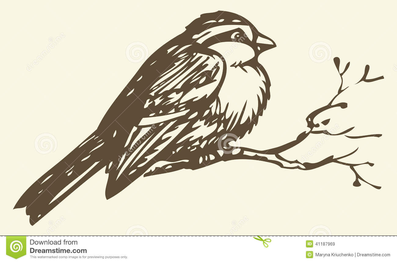 Vector Drawing. Small Titmouse On A Branch Vector