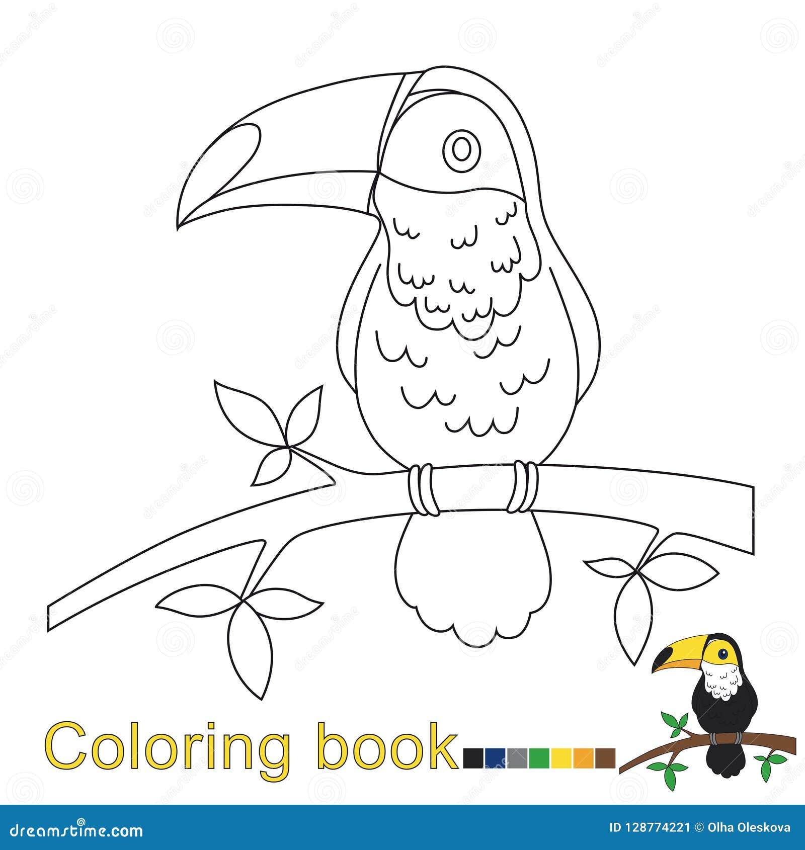 Vector El Ejemplo Del Tucán Para El Libro De Colorear Para Los Niños