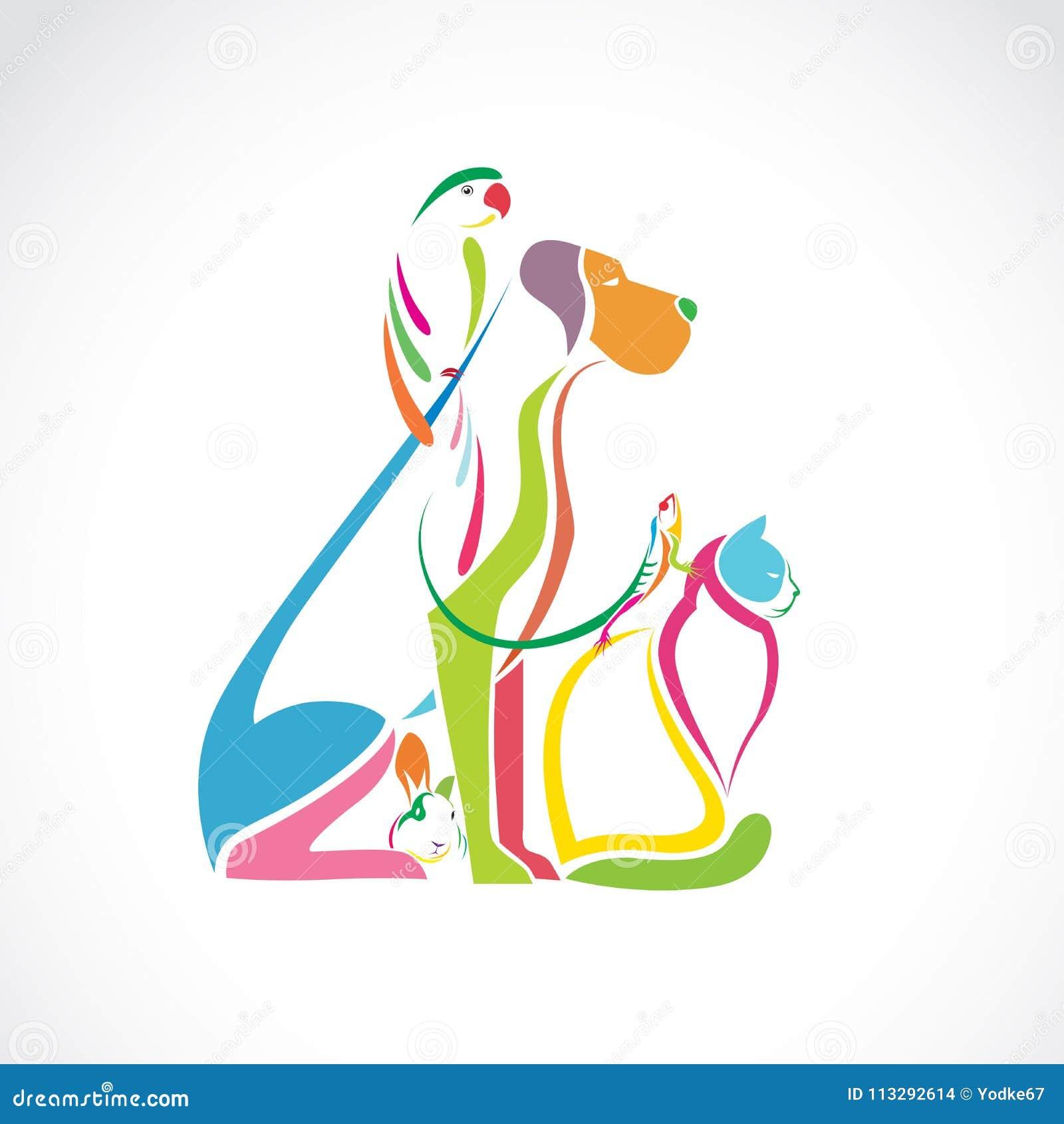 Vector el grupo de animales domésticos coloridos - perro, gato, pájaro, camaleón,