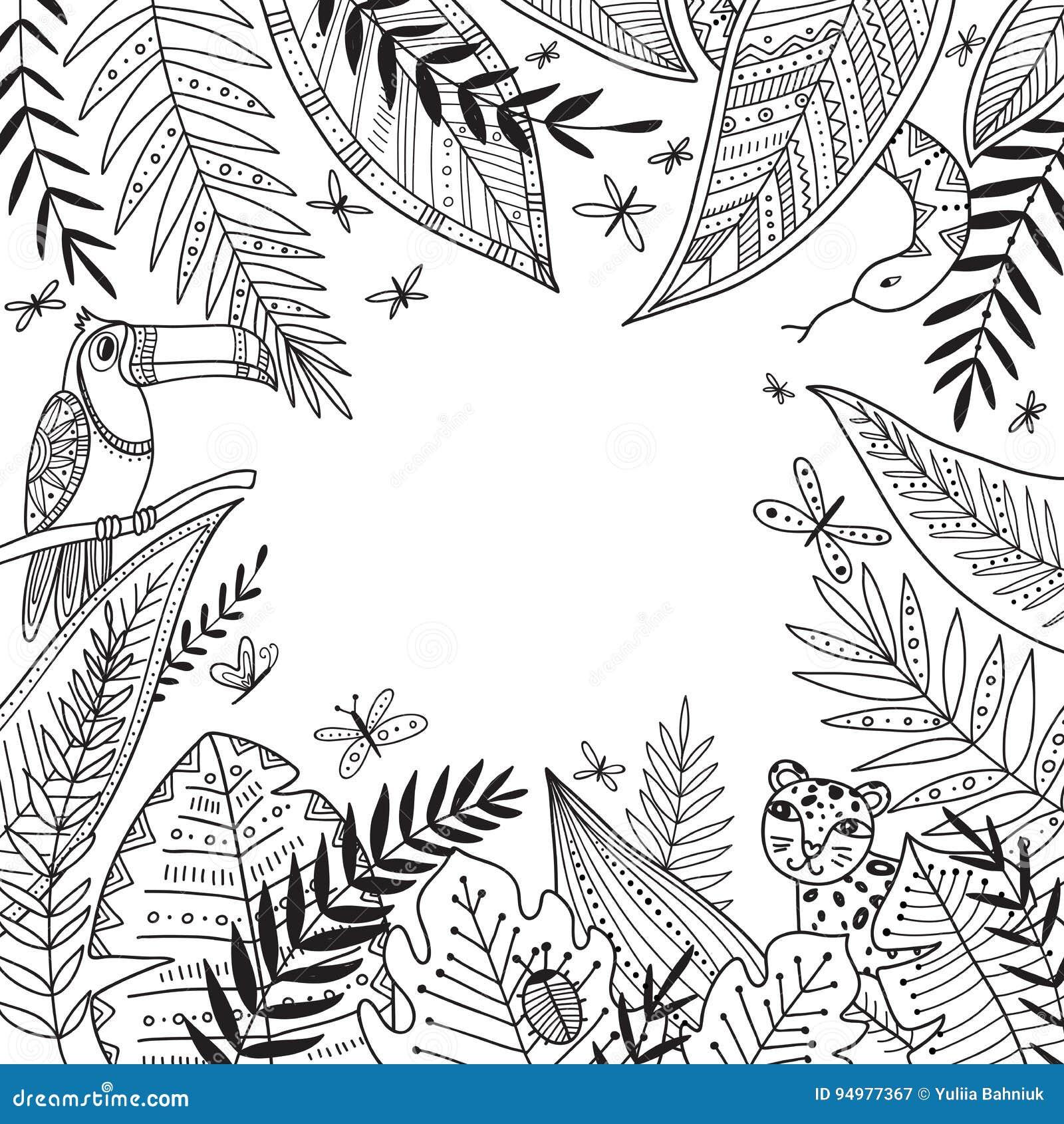 Vector El Marco De La Selva Con Las Plantas Exóticas En Estilo ...