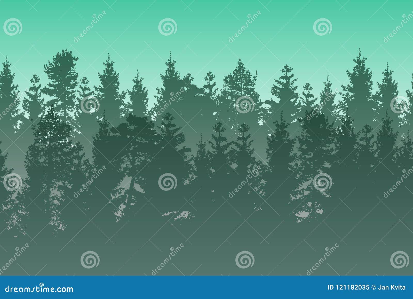 Vector el paisaje con el bosque conífero brumoso acodado verde