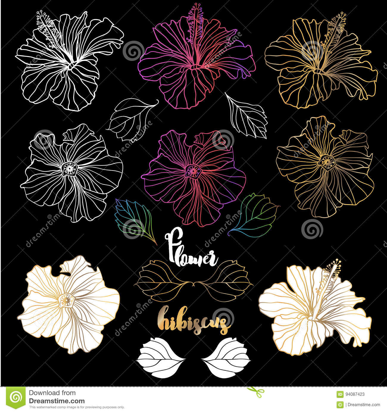 Vector Elegant Decorative Hibiscus Flowers Design Elements Stock