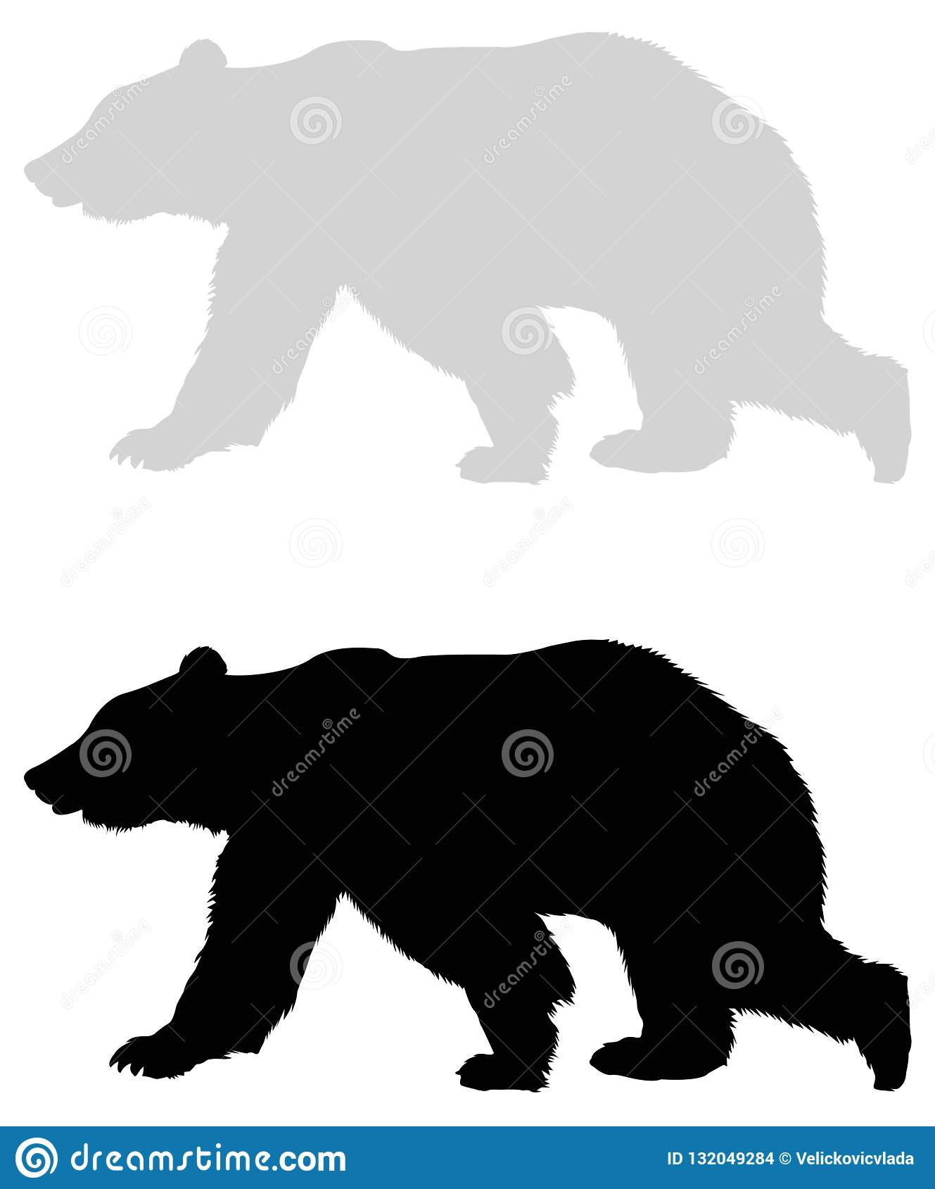 Bear silhouette - wildlife animal