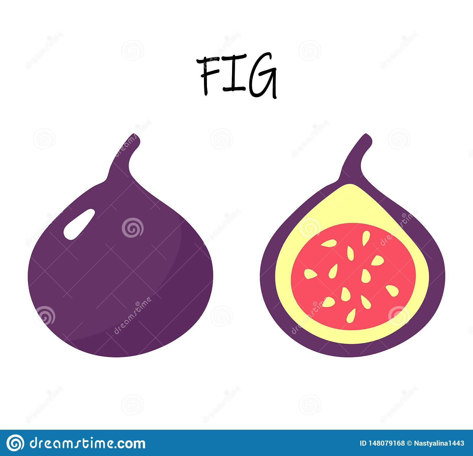 Vector flat illustartion of figs - one whole and one cut.