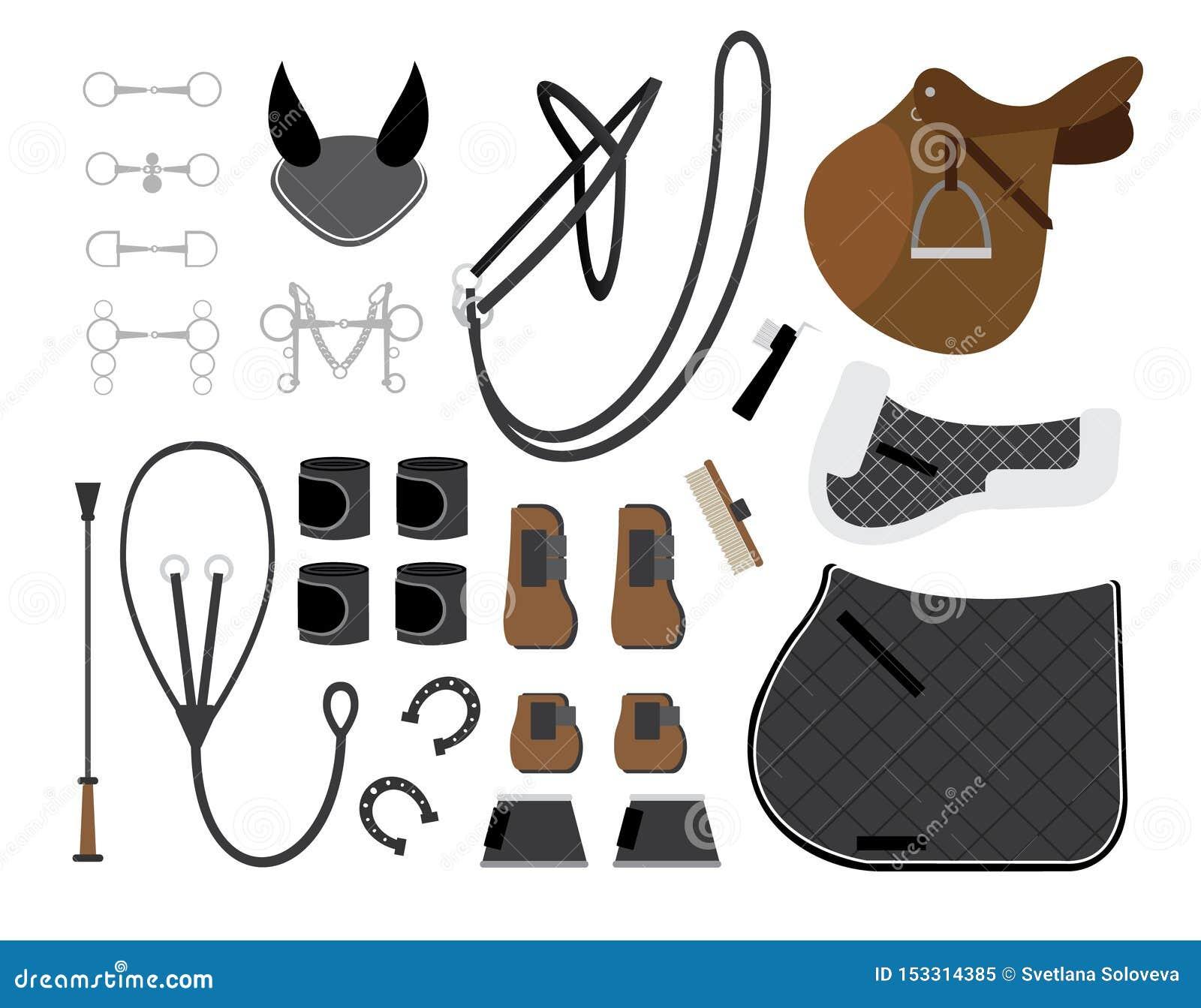 Vector Flat Set Of Horse Equipment For Riding Stock Vector Illustration Of Equipment Element 153314385