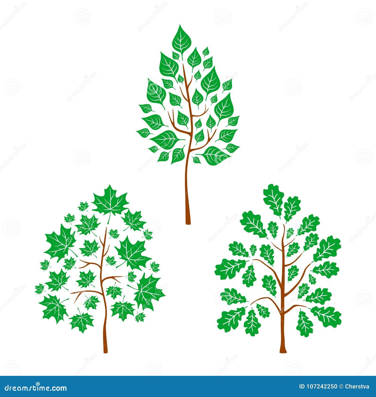 Vector Flat Trees On White Background Logo Design Illustration Stock Vector Illustration Of Hand Forest 107242250