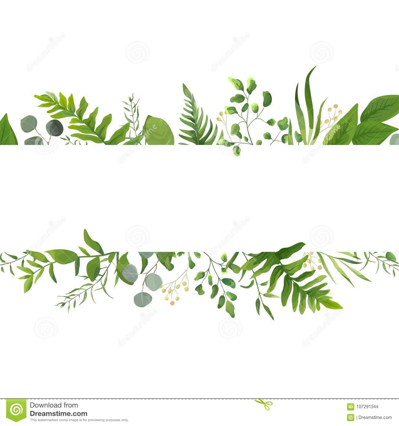 Vector floral greenery card design: Forest fern frond Eucalyptus