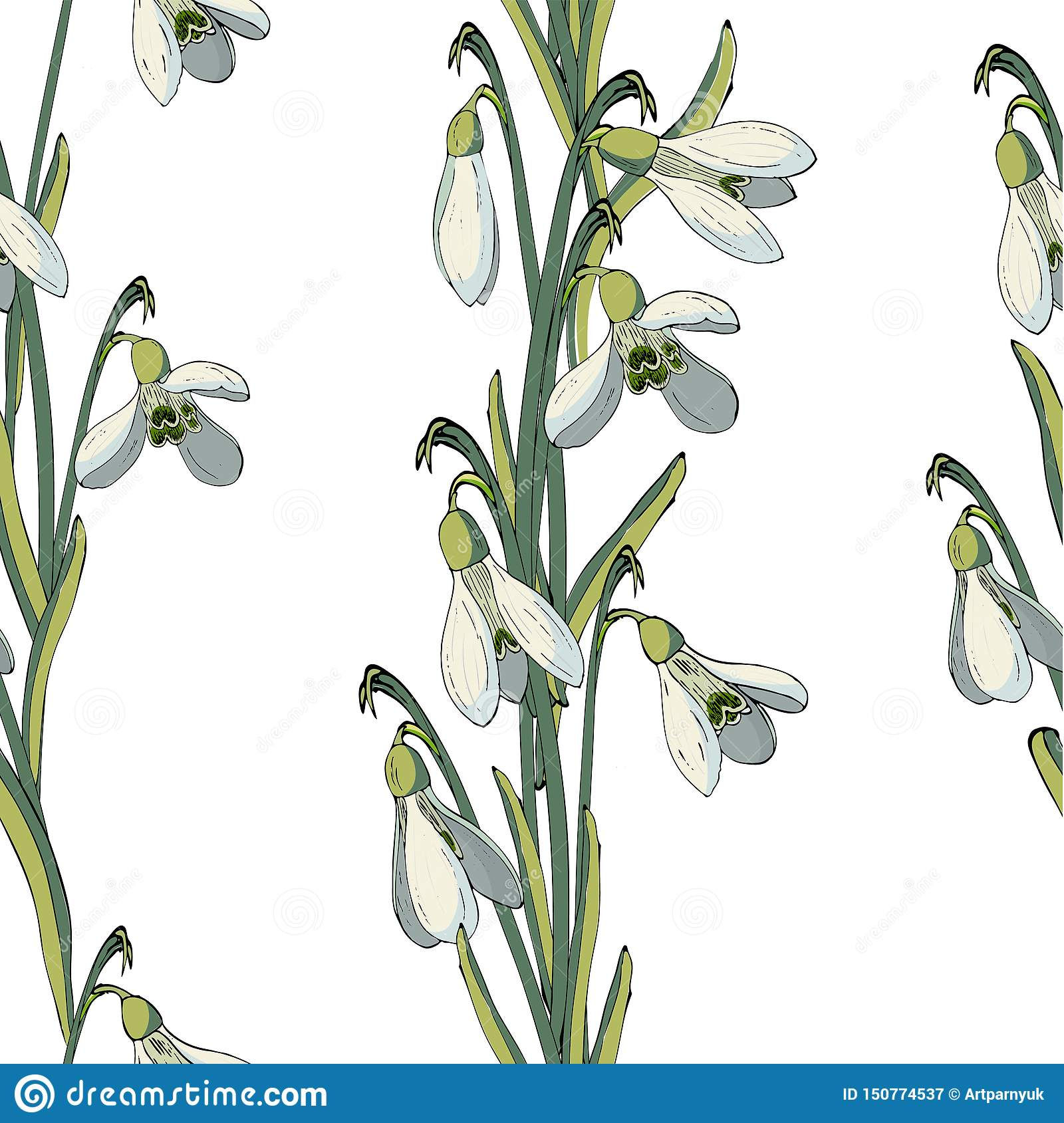 Vector floral seamless pattern with snowdrops