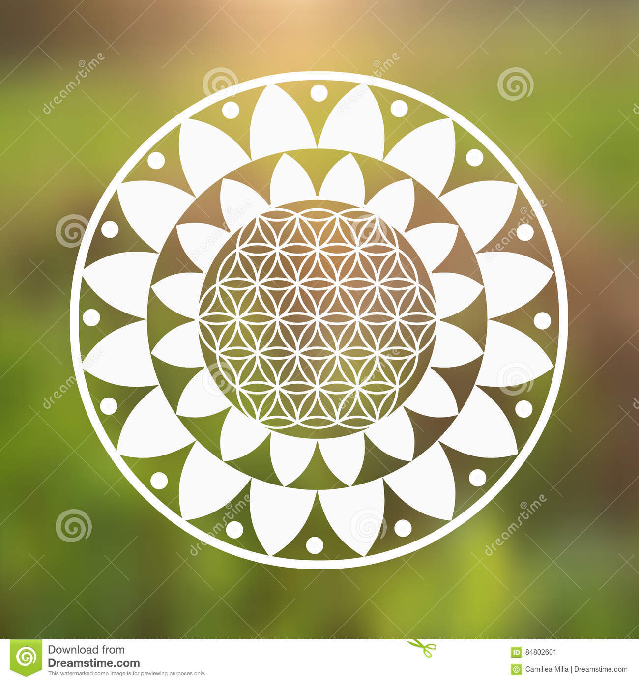 Vector Flower Of Life Symbol And Lotus Flower On A Natural