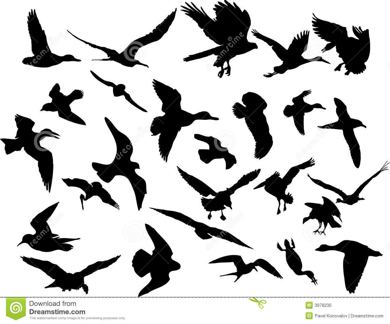 Set Of Sketches Of Butterflies Download Royalty Free Vector File Eps moreover Bull Cartoon moreover Black Raven Drawn In Sketch Style Download Royalty Free Vector File Eps as well Duck Drawings together with Cartoon Ostrich. on black animal outlines
