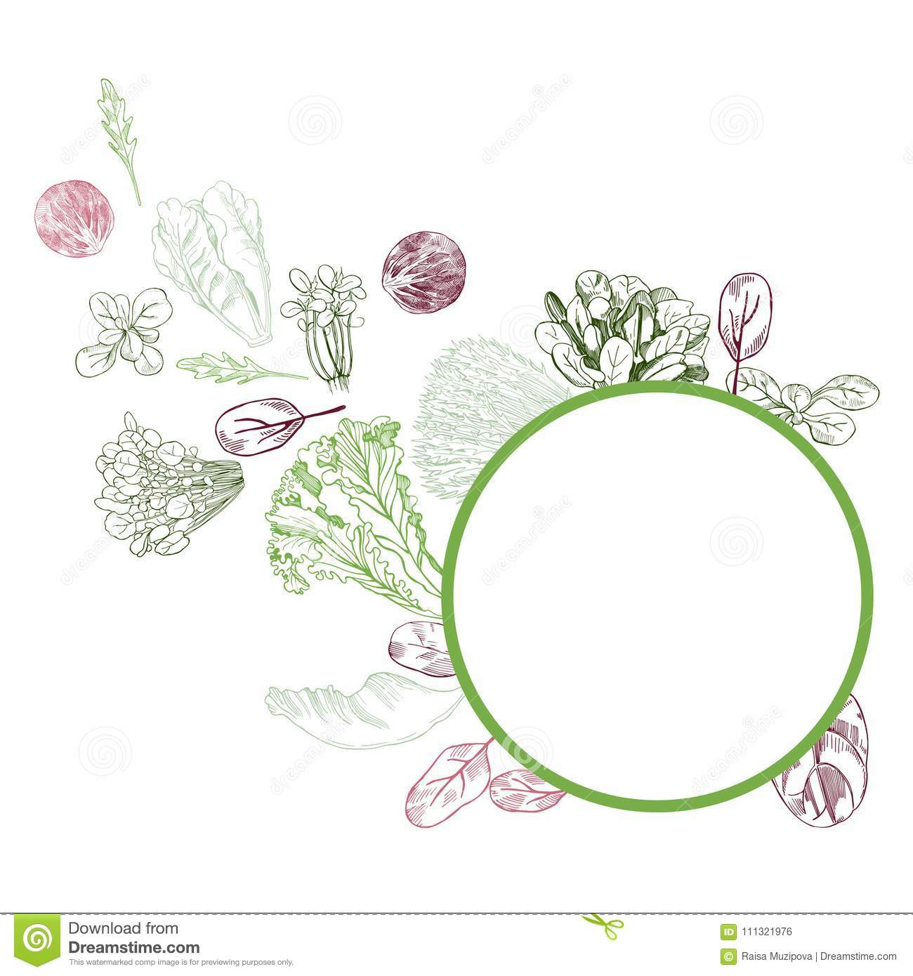 Vector Frame With Hand Drawn Different Kinds Of Lettuce On White