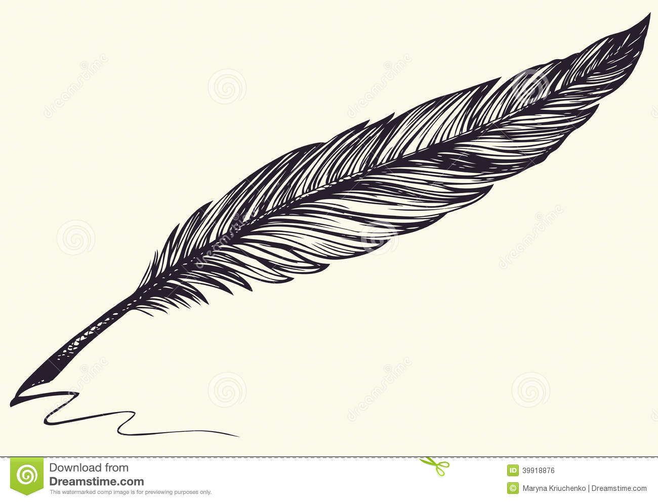 Feather Bird Drawing - Viewing Gallery Bird Feathers Drawing