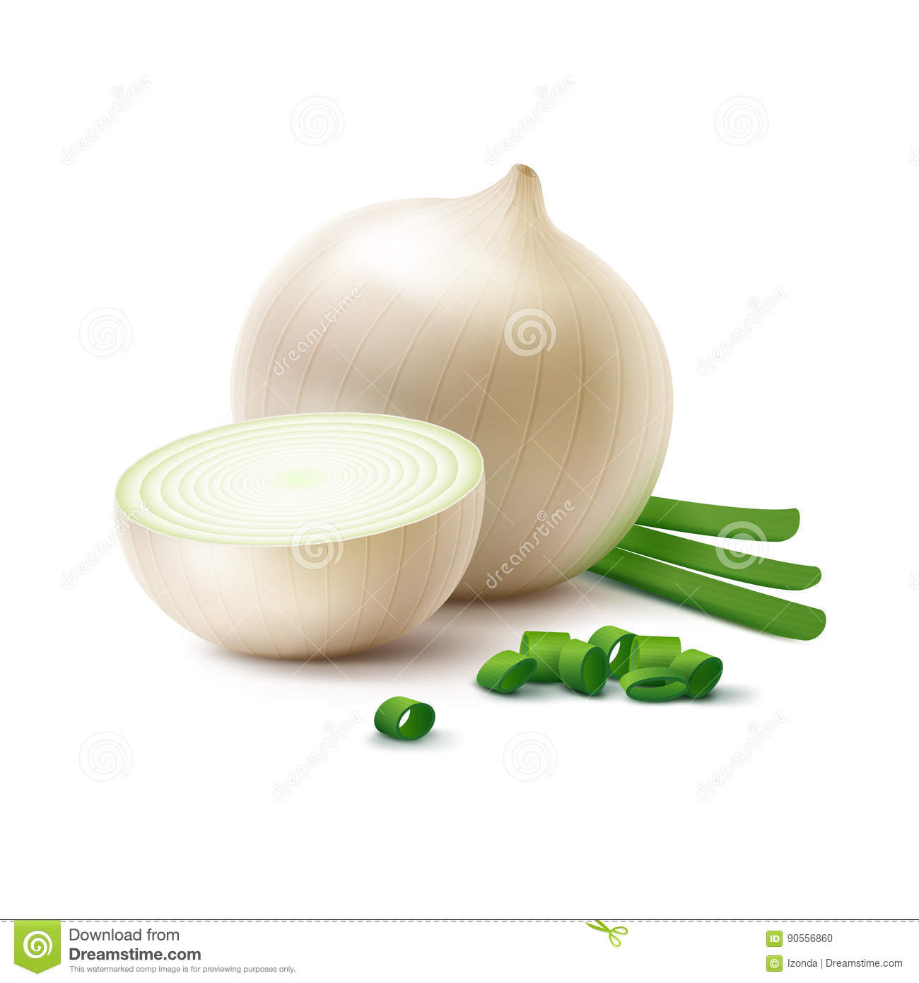 Vector Fresh Whole And Sliced White Onion Bulbs With ...