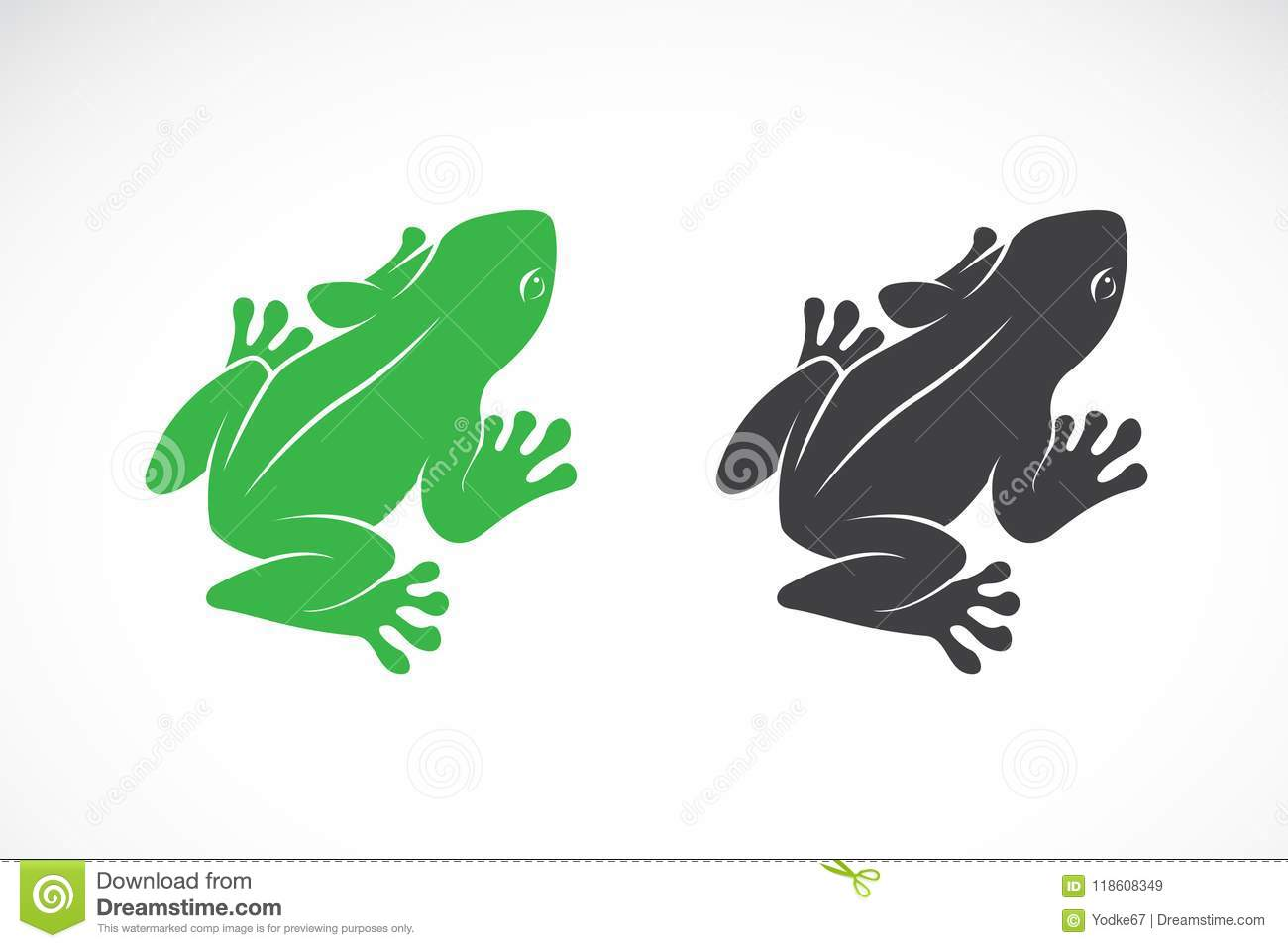 Vector of frogs design on white background. Amphibian. Animal.