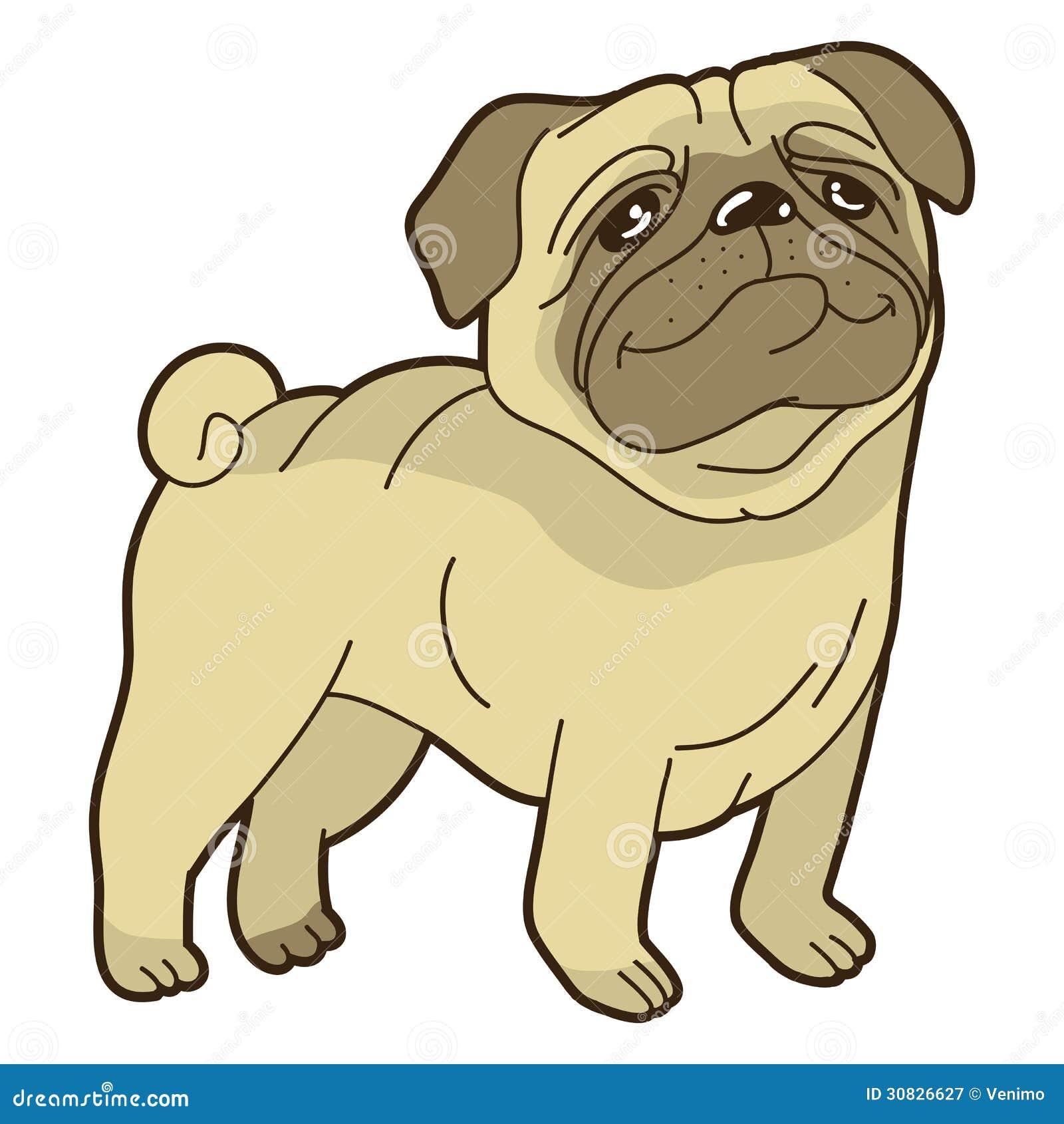 Vector Funny Cartoon Pug Royalty Free Stock Photography
