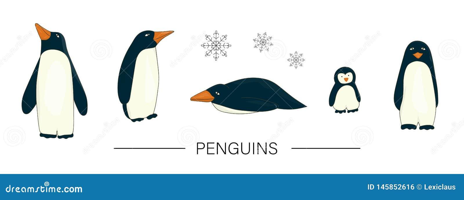 Vector gekleurde reeks leuke pinguïnen van de beeldverhaalstijl die op witte achtergrond wordt geïsoleerd