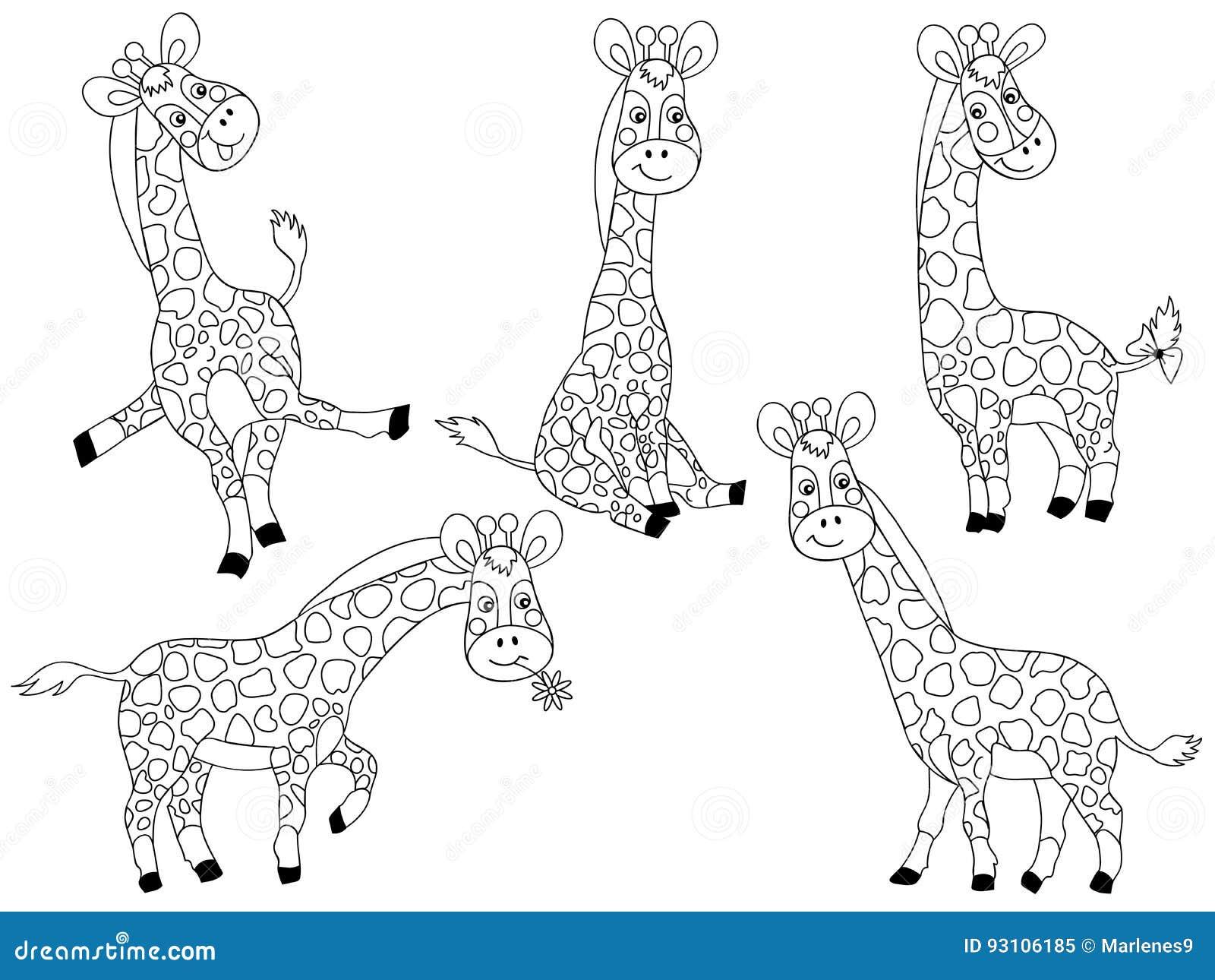 Vector Giraffes Set Stock Vector Illustration Of Animal 93106185
