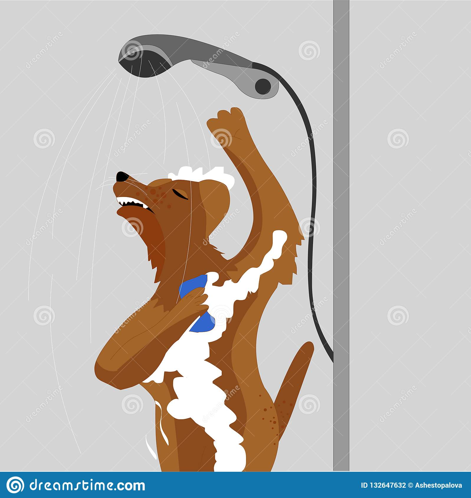 The dog washes in the shower