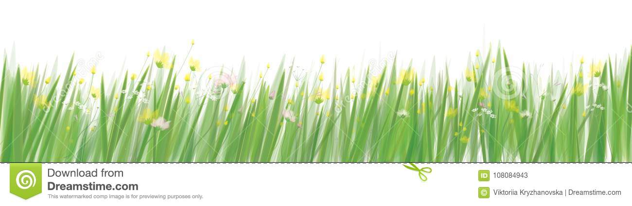 grass and flowers border. Delighful Flowers Download Vector Grass And Flowers Border Stock  Illustration Of  Flower Vector Inside Border