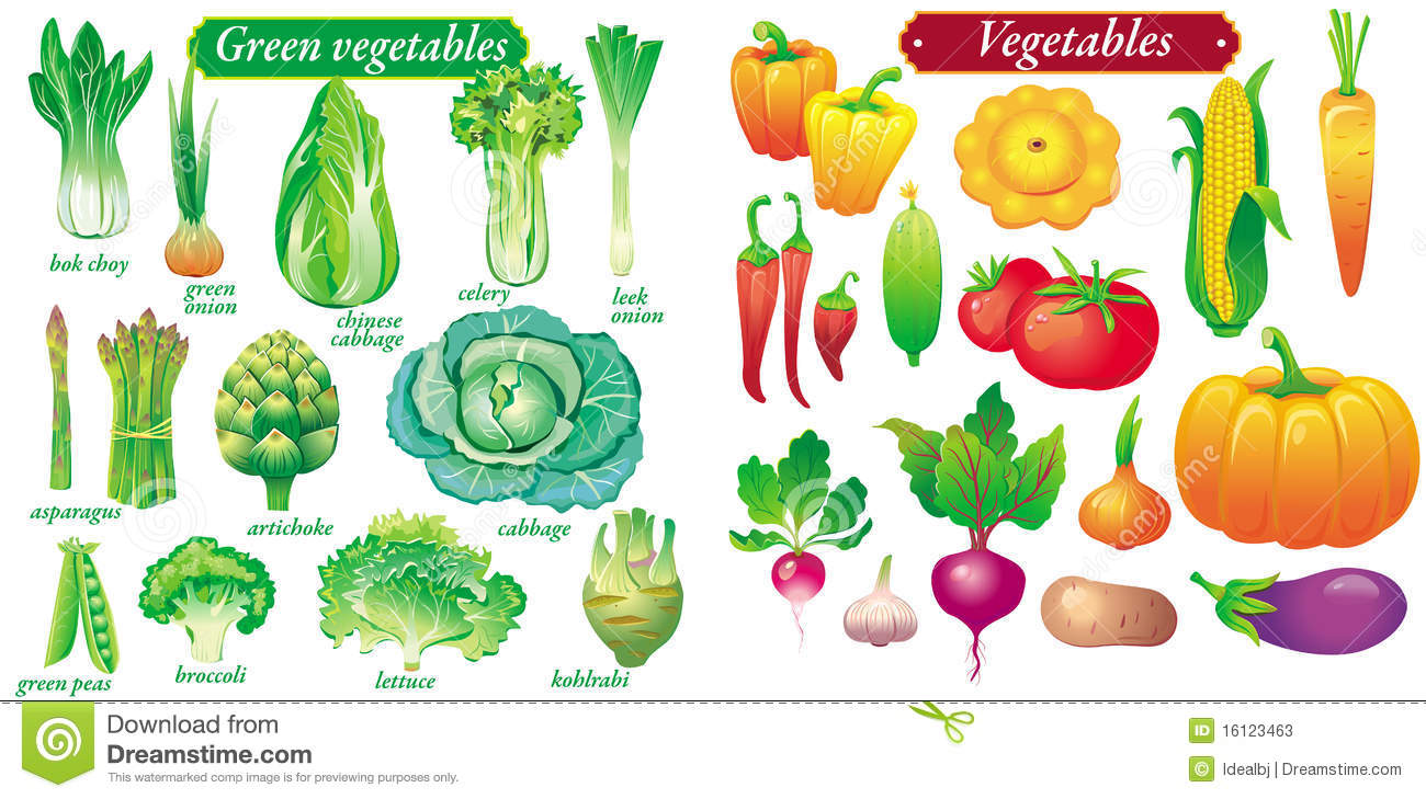 Stock Photo: Vector green vegetables. Image: